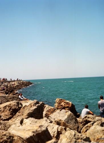 Les Algérois et leur amour pour la mer