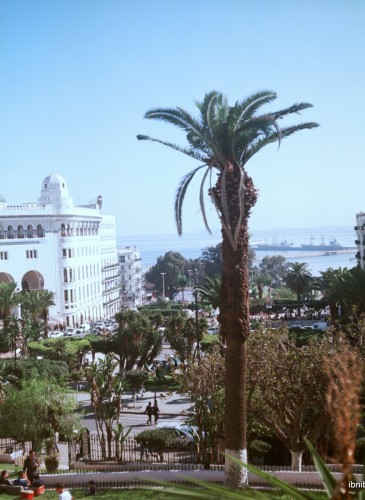 Vue générale sur la place de la Grande Poste, avec le port d'Alger en arrière-plan