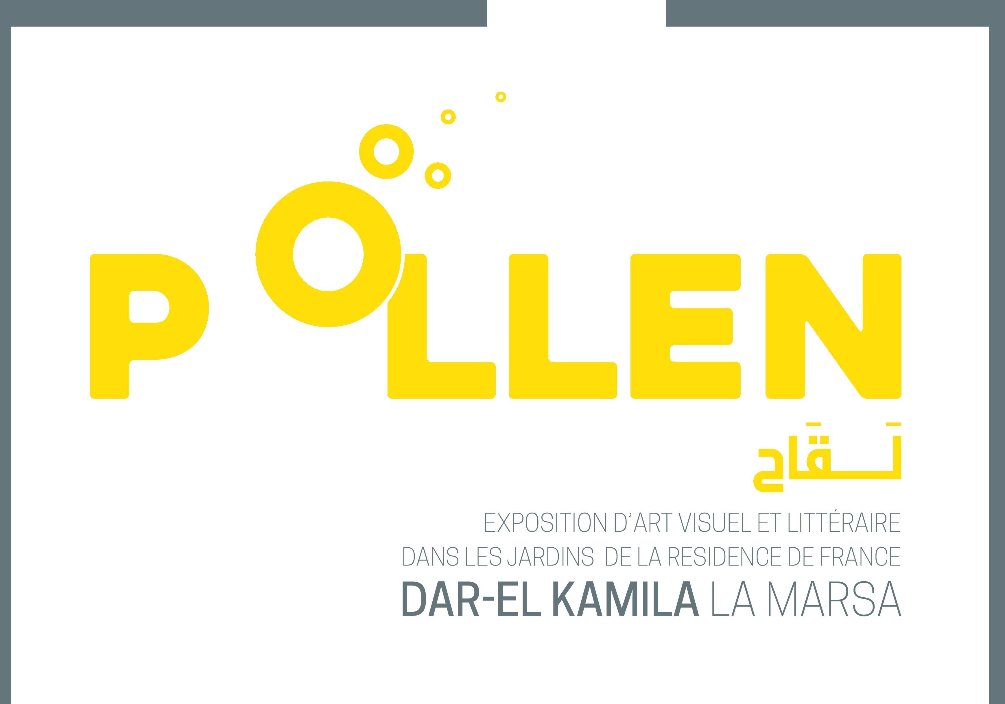 """""""Pollen"""" exposition du 4 au 12 juin 2016 à Dar El Kemila"""