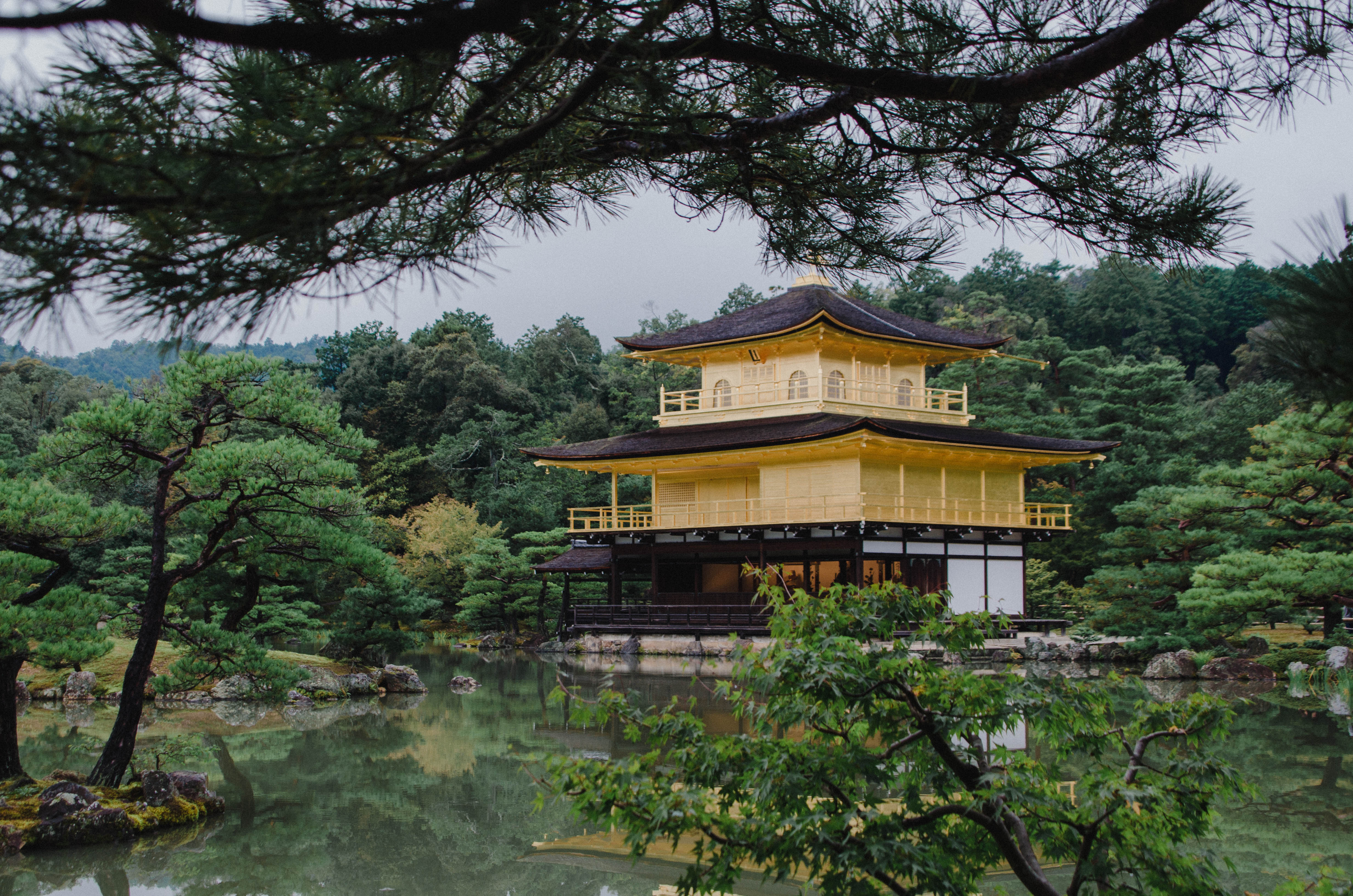 An amazing travel in Japan
